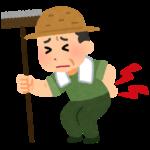 いつも思うんやが農家とか漁師ってだいたいみんな老人やん?