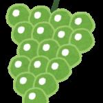 【悲報】韓国が日本の高級ブドウ「ルビーロマン」を盗んで栽培していたことが判明!韓国農家「大目に見ろやwww」